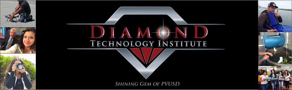 Diamond Technology Institute  Logo
